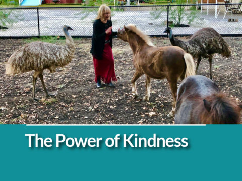 Celebrate World Kindness Day: The Power of Kindness